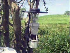 mosquito aberdeen trap insects west nile virus
