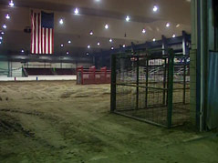 coors rodeo bull ring