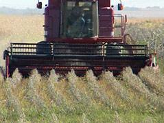 harvest ag agriculture farming farmers weather