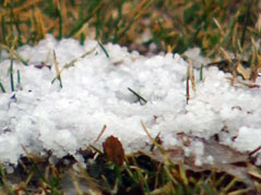 winter /melting /snow
