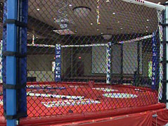 MMA cage fighting / watertown