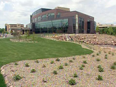 avera mckennan campus prairie center lawn green