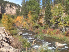 spearfish / canyon