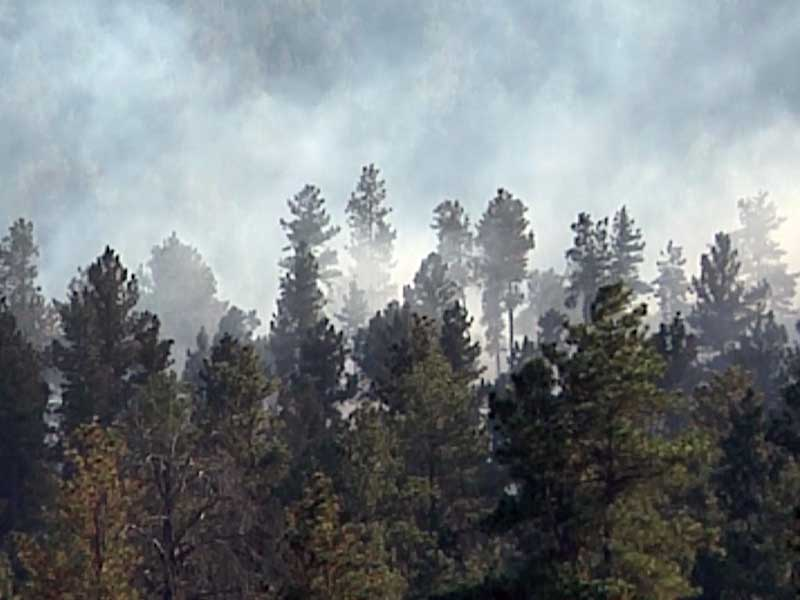 fire danger black hills smoke wildfire prescribed fire custer state park