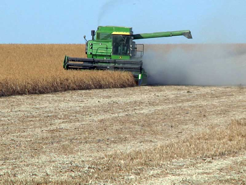 soybeans field harvest combine farming agriculture