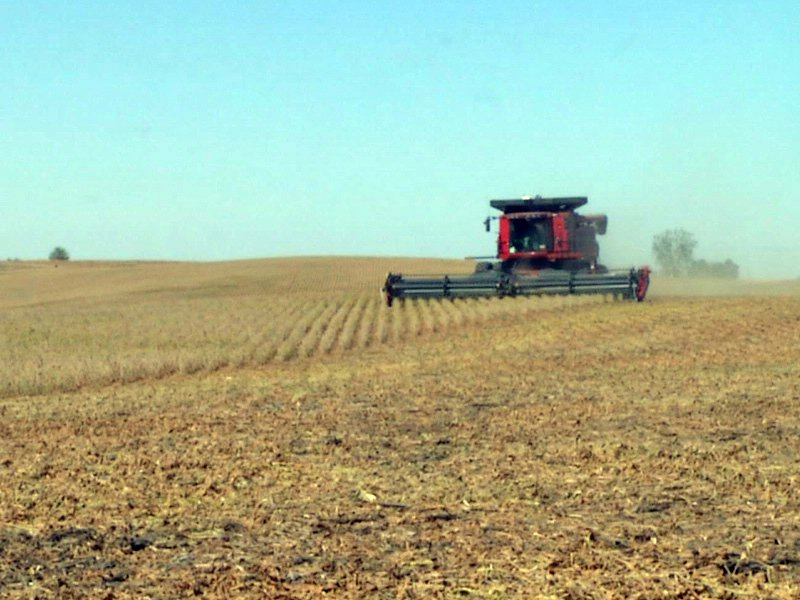 soybeans soybean harvest crop farming agriculture markets