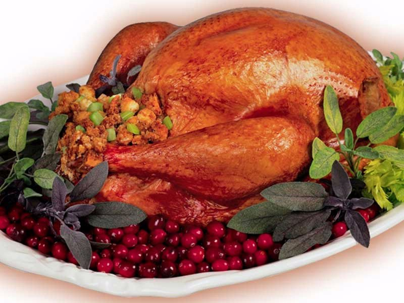 THANKSGIVING TURKEY graphic stuffing cranberries