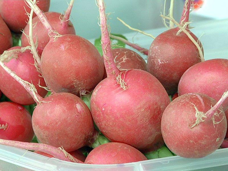 farmers market radishes generic healthbeat