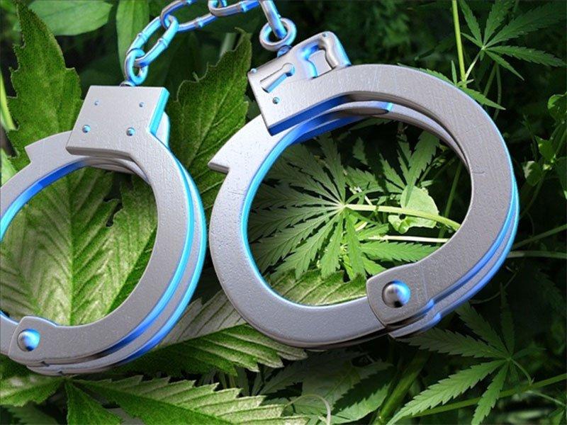Generic, Pot, Marijuana, Arrest