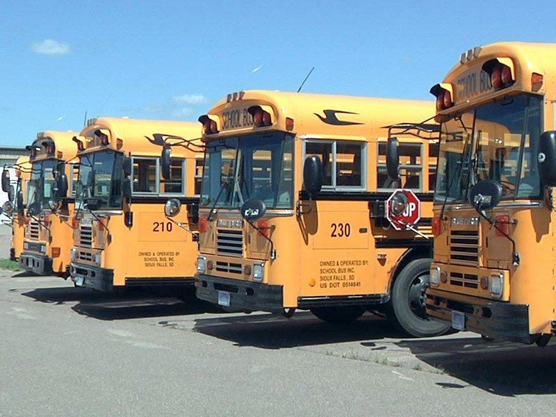 school buses bus