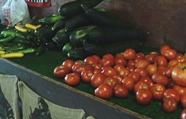 Heat Impact On Growing Produce