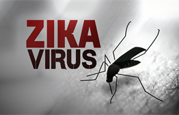 Preparing For Zika In KELOLAND