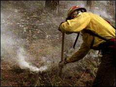 Wind Cave National Forest goes up in flames. 1100 acres burn.