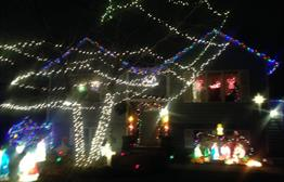 Christmas Lane on Holbrook Ave.