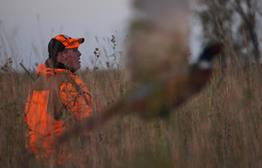 Opening Day of Pheasant Hunting 2015