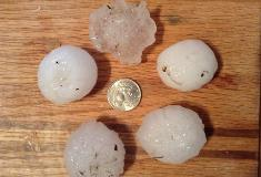Hail from near USF