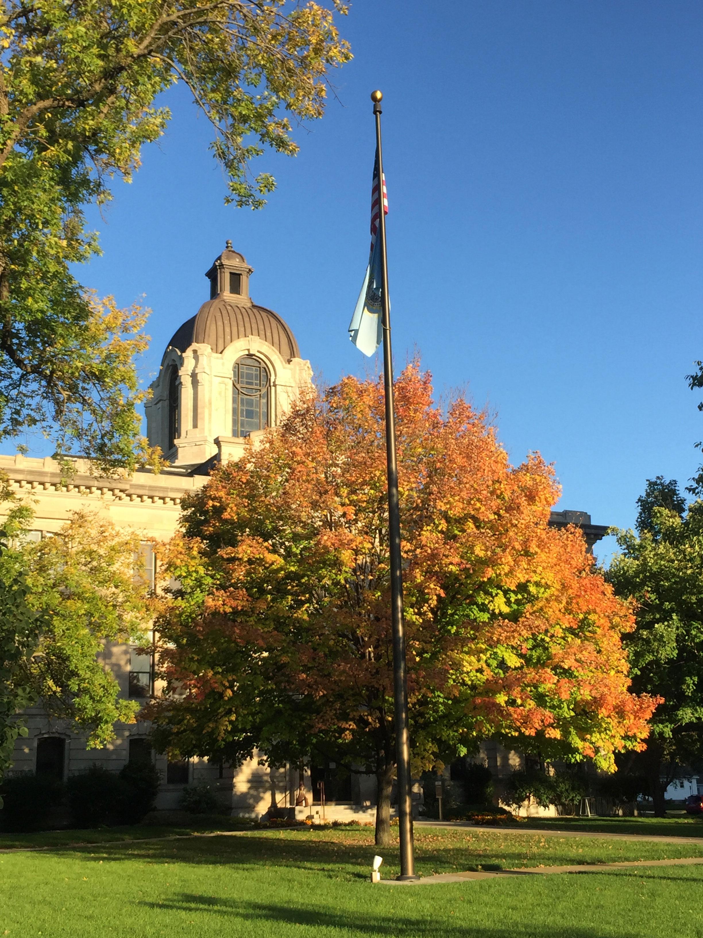 Fall Foliage in Brookings