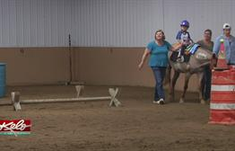 Healthbeat: Hippotherapy
