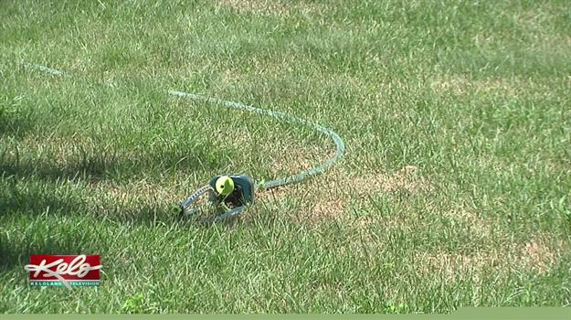 Keeping Your Lawn Green While Following The Lawn Watering Program