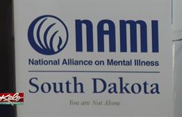 Support For Families Dealing With Mental Illness