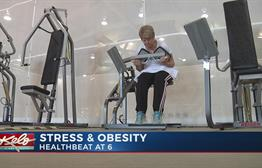 Chronic Stress Could Be Linked To Obesity