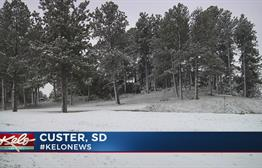 Spring Snow Melts Quickly In The Black Hills