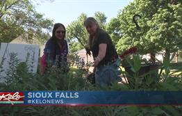 City Council Member Uses Green Thumb To Help Families Reconnect