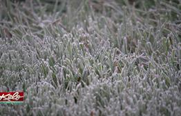 Late First Freeze For Sioux Falls