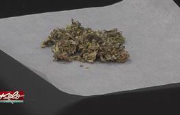 A Closer Look At Synthetic Marijuana