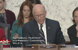 SD Consultant In Middle Of Federal Investigations Into Food Stamp Data Reporting By States