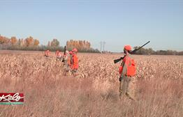 78-Year-Old Friends Pheasant Hunting In KELOLAND For More Than A Decade