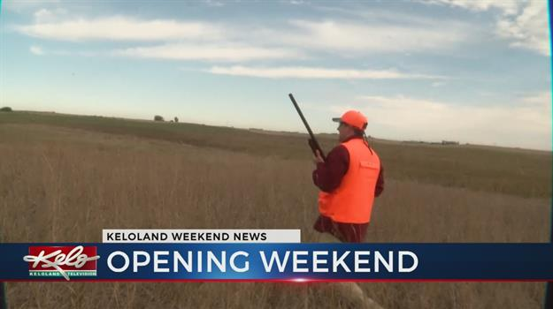 Pheasant Hunters Close Out Opening Weekend